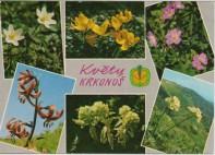 Krkonoše - Kozí hřbety 005