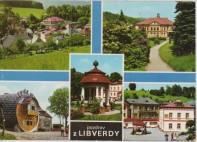 Libverda - VF 010