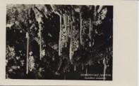 Demänovské jaskyne - mf 001